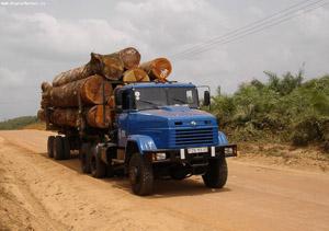 Kraz timber